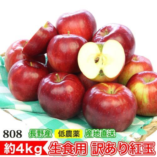 2021年9月出荷 訳あり 減農薬 長野 生食用 紅玉 りんご 毎日激安特売で 営業中です 約4kg 9g 小山 リンゴ 林檎 C品 小玉16〜30個入 爆売り 産地直送 SSS