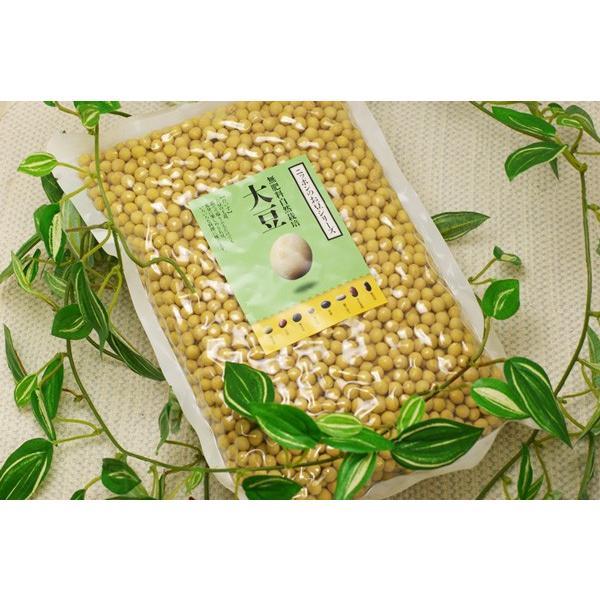 【無肥料・自然栽培】大豆1kg
