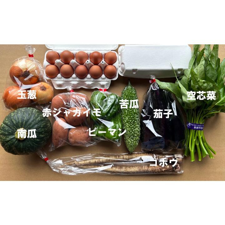 激安セール クール便で発送 おすすめ 九州佐賀の農家直送野菜セット こだわりのたまご20個 お野菜8品