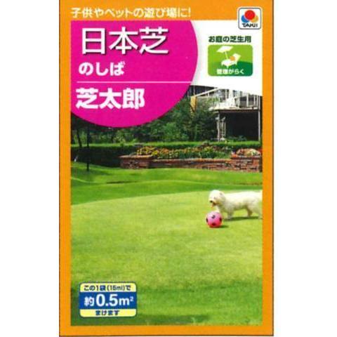新作入荷!! 日本芝 気質アップ のしば芝太郎 タキイTTSノシバ 0.5平方メートル タキイの種 芝生の種