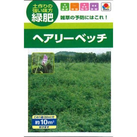 ヘアリーベッチ ナモイ タキイの種 緑肥 贈与 早割クーポン 約10平方メートル分 景観
