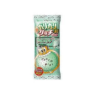 赤城 ガリガリ君リッチ チョコミント味 100ml×24本入 リニューアル ファクトリーアウトレット 特価品コーナー☆