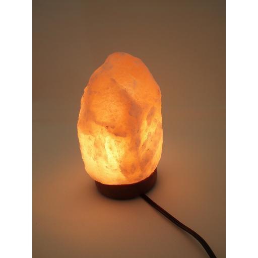 岩塩ランプ ナチュラル型SS 10個 ソルトランプ ※配線器具は付きません■別途購入■