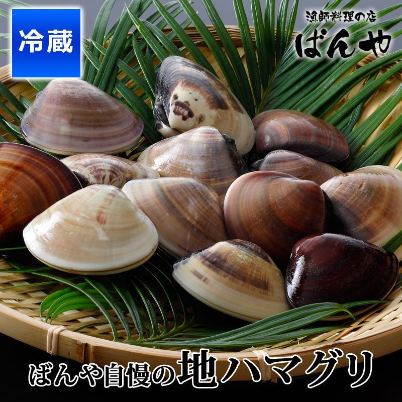 ばんや自慢のハマグリ 2kg 蛤 はまぐり 国産 超歓迎された 千葉県九十九里産 砂抜き済み 活きハマグリ 海鮮 お得セット お中元 地ハマグリ ばんや ギフト 千葉県産 特大サイズ
