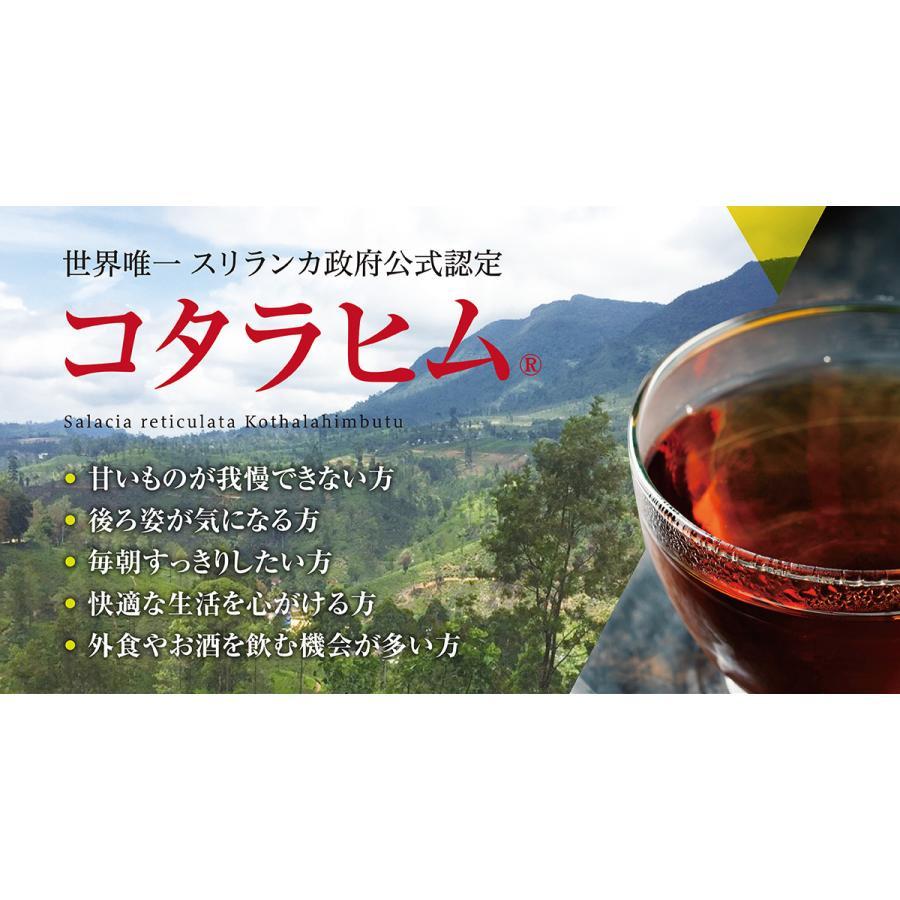 スリランカ産 コタラヒムブツ100%茶 220g サラシア(送料無料:1袋クリックポスト 2袋以上宅配便)|a-bic|06