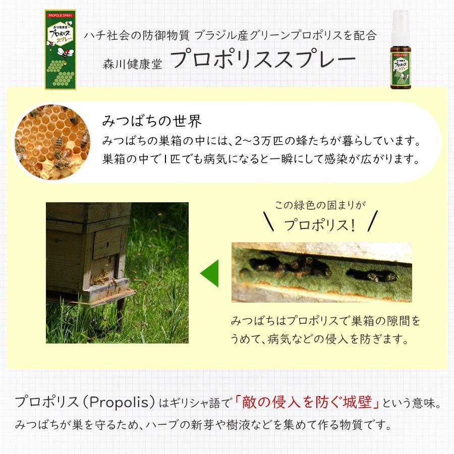 森川健康堂 プロポリススプレー 20ml 送料無料 定形規格外郵便発送 a-bic 03