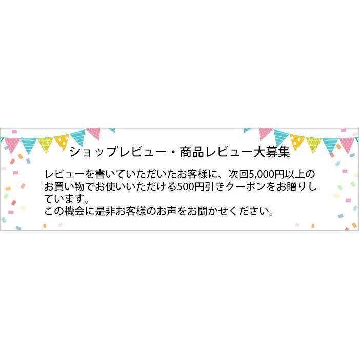 森川健康堂 プロポリススプレー 20ml 送料無料 定形規格外郵便発送 a-bic 06