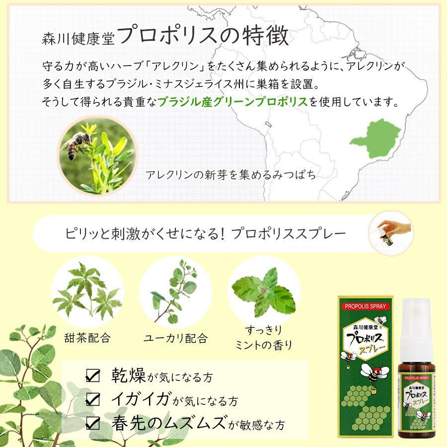 森川健康堂 プロポリススプレー 20ml 送料無料 定形規格外郵便発送 a-bic 04