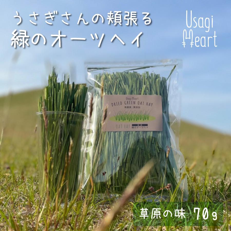 アウトレット うさぎさんの頬張る 緑のオーツヘイ 草原の味 70g 国産 新色追加 無農薬 無添加 牧草 Usagi Heart うさぎハート うさぎのおやつ うさぎ