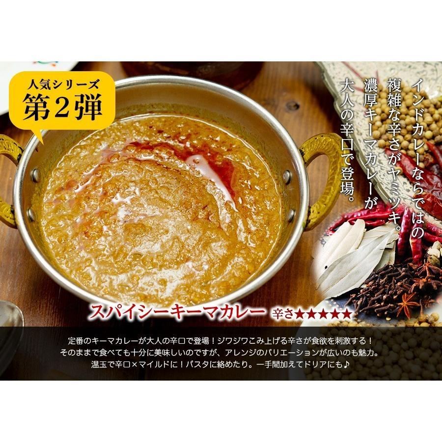 カレー 選べる 3食セット レトルトカレー インドカレー 神戸アールティー セール グルメ 送料無料|aarti-japan|18