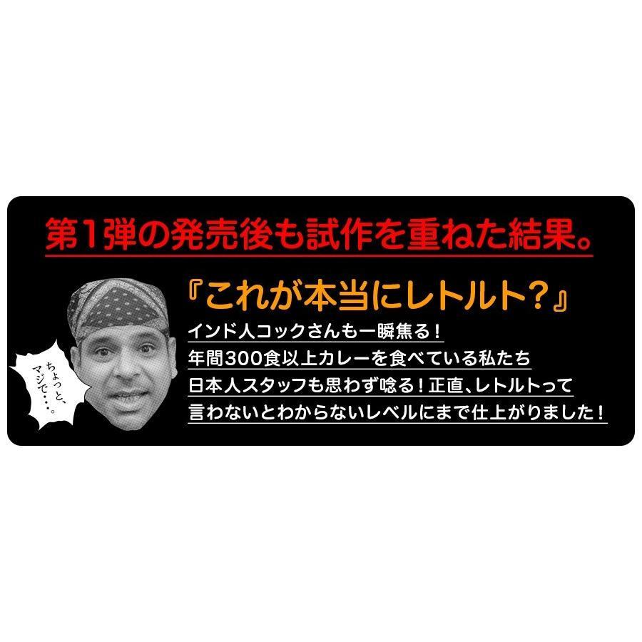 カレー 選べる 3食セット レトルトカレー インドカレー 神戸アールティー セール グルメ 送料無料|aarti-japan|05