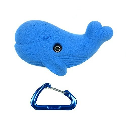 Medium Whale | Bolt-on Rock Climbing Holds | Blue