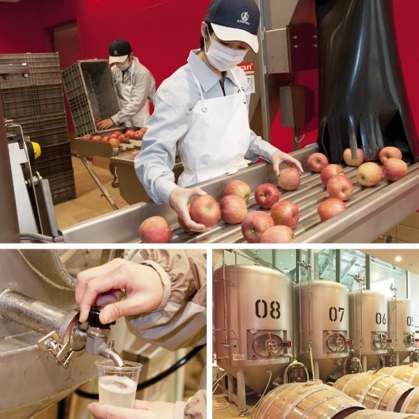 シードル 果実酒 リンゴ酒 青森 エーファクトリーアオモリシードルsweet750ml ALC.3%|abc-afactory|04