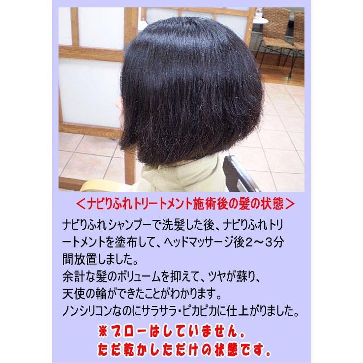 ナビりふれトリートメント250g|accesnavicom|06