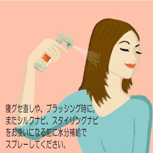 ナビシャワー250ml accesnavicom 03