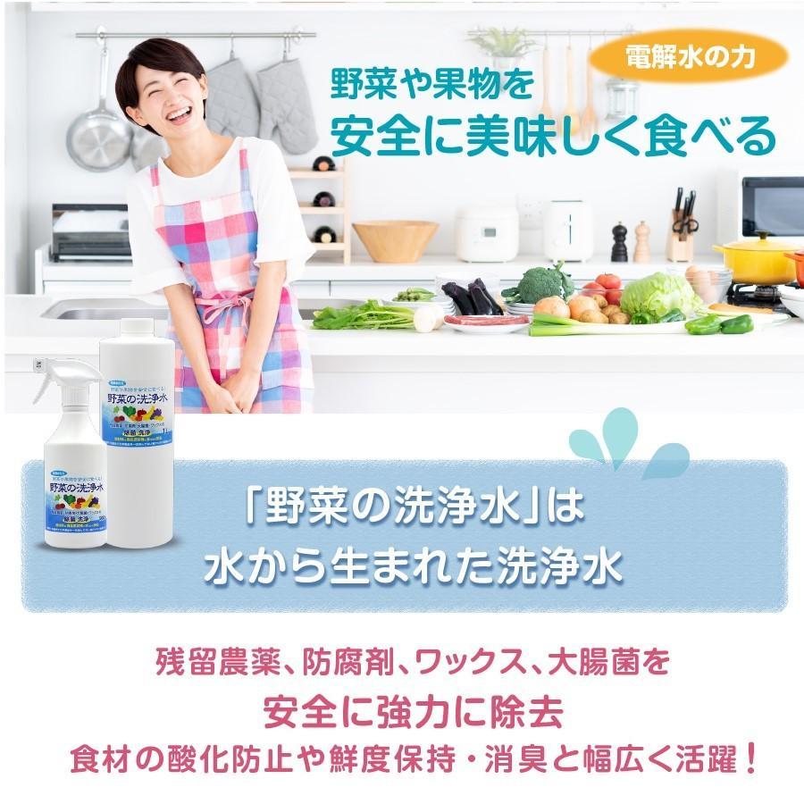 野菜を安全に美味しく食べる 【 野菜の洗浄水 1L 2本セット 】 農薬除去 野菜洗い 食材の酸化防止 鮮度保持 汚れ落とし 強アルカリ電解水 掃除にも使えます ace-life-pro 02