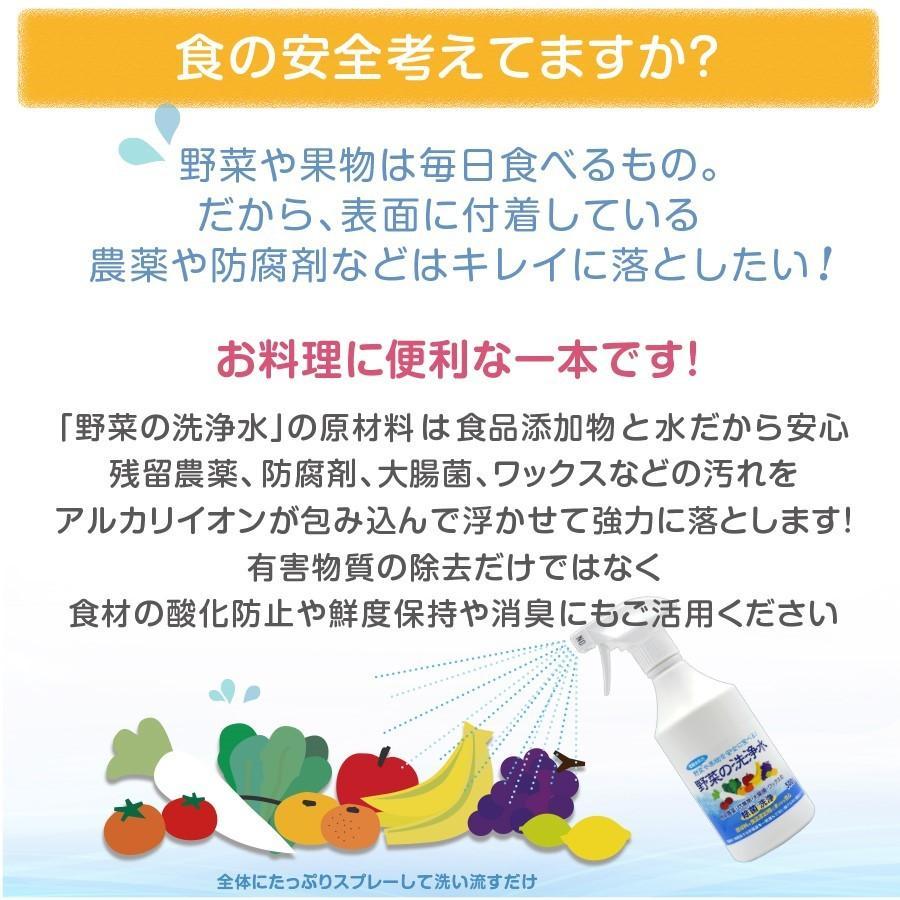 野菜を安全に美味しく食べる 【 野菜の洗浄水 1L 2本セット 】 農薬除去 野菜洗い 食材の酸化防止 鮮度保持 汚れ落とし 強アルカリ電解水 掃除にも使えます ace-life-pro 03