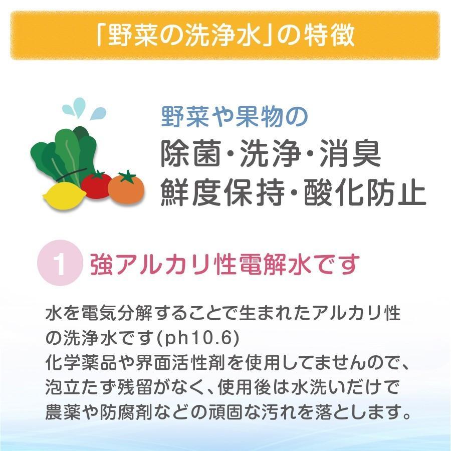 野菜を安全に美味しく食べる 【 野菜の洗浄水 1L 2本セット 】 農薬除去 野菜洗い 食材の酸化防止 鮮度保持 汚れ落とし 強アルカリ電解水 掃除にも使えます ace-life-pro 04