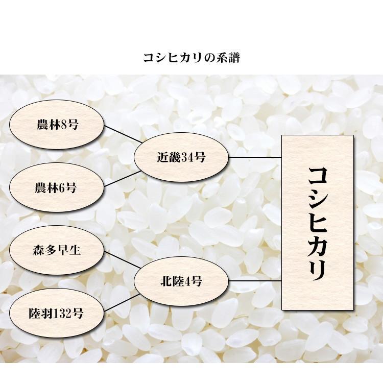 新米 お米 20kg 送料無料 白米 コシヒカリ 5kg×4袋 富山県産 令和3年産 1等米 お米 20キロ 食品 北海道・沖縄は追加送料|adachinet-umai|05
