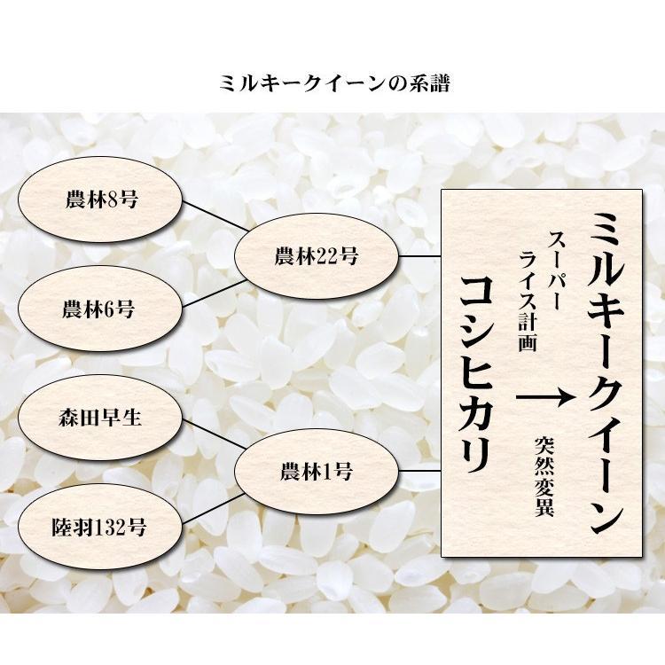 米 10kg 送料無料 新米 ミルキークイーン 5kg×2袋 福島県産 令和2年産 米 10キロ お米  ふくしまプライド。体感キャンペーン(お米)|adachinet-umai|06