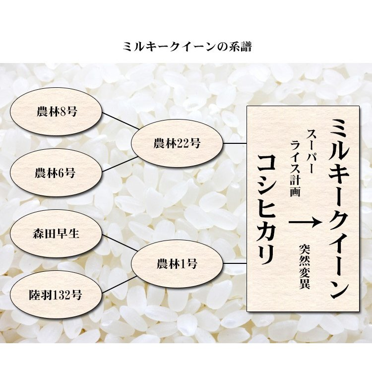 新米 お米 20kg 送料無料 ミルキークイーン 5kg×4袋 福島県産 令和3年産 米 20キロ お米  ふくしまプライド。体感キャンペーン(お米)|adachinet-umai|06