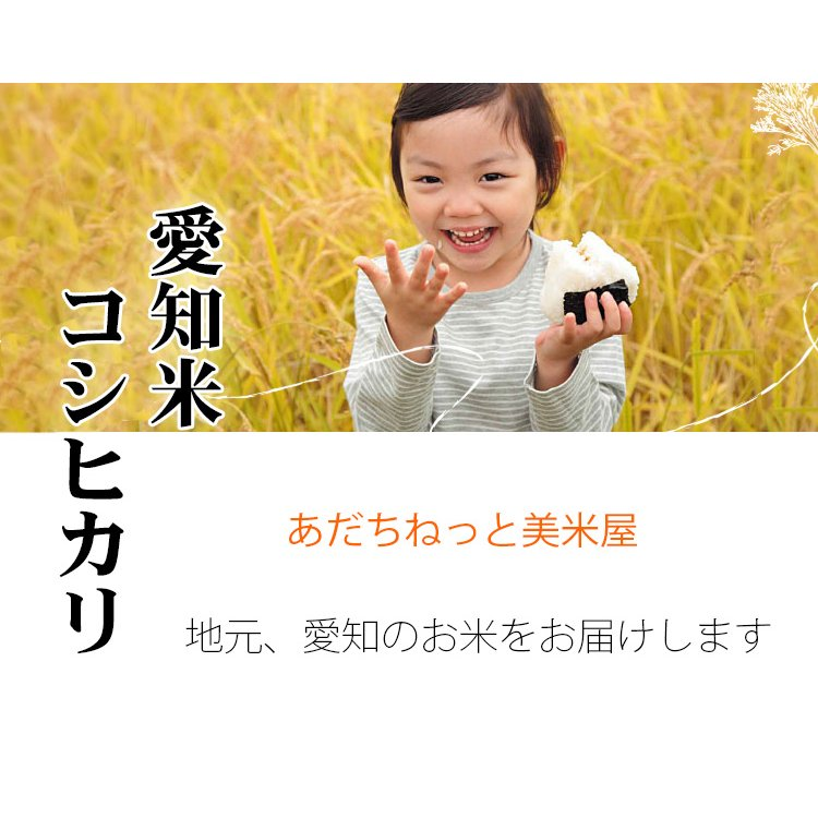 新米 お米 10kg 白米 送料無料 白米 コシヒカリ 5kg×2袋 愛知県産 令和3年産 お米 あす着く食品 北海道・沖縄は追加送料|adachinet-umai|02