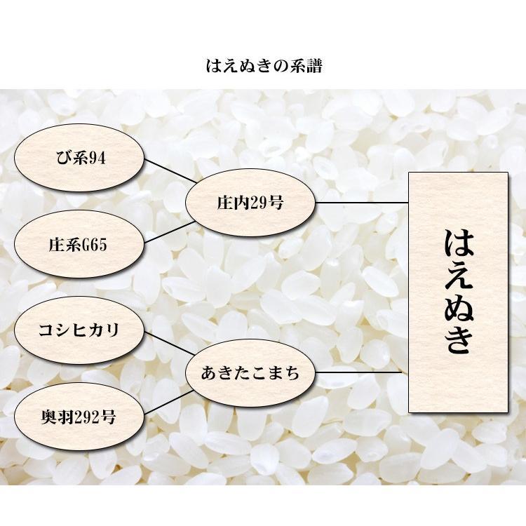 新米 お米 20kg 送料無料 白米 はえぬき 5kg×4袋 山形県産 令和3年産 1等米 お米 20キロ 食品 北海道・沖縄は追加送料|adachinet-umai|05
