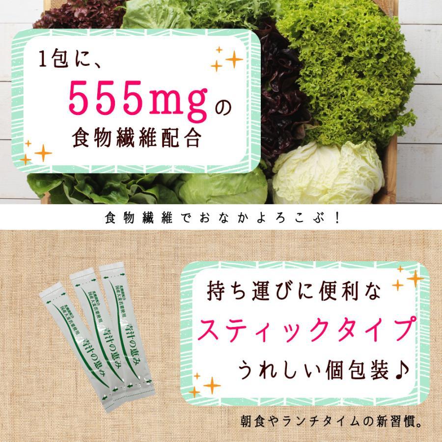 ( 鹿児島県産 乳酸菌 青汁 : 63包 9週間分 )  189g 国産 人気 健康 ダイエット 乳酸菌 食物繊維 大麦若葉 野菜 送料無料 ギフト|aemotion|13