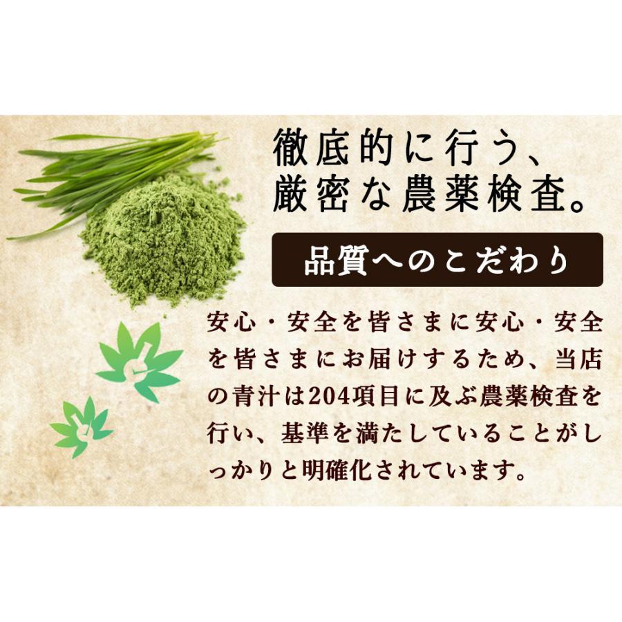 ( 鹿児島県産 乳酸菌 青汁 : 63包 9週間分 )  189g 国産 人気 健康 ダイエット 乳酸菌 食物繊維 大麦若葉 野菜 送料無料 ギフト|aemotion|08