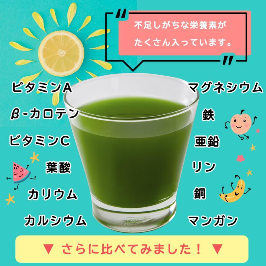 ( フルーツ青汁:1か月分 ) 90g(3g×30包)ワンコイン 青汁 ダイエット お試し 健康 ギフト フルーツ 酵素  国産 大麦若葉 送料無料 ギフト|aemotion|06