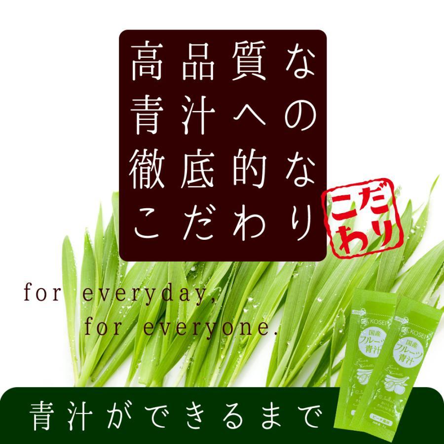( フルーツ青汁:1か月分 ) 90g(3g×30包)ワンコイン 青汁 ダイエット お試し 健康 ギフト フルーツ 酵素  国産 大麦若葉 送料無料 ギフト|aemotion|10