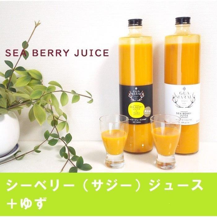 グアマラル シーベリージュースジュース 付与 サジー +ゆず 税込 720ml