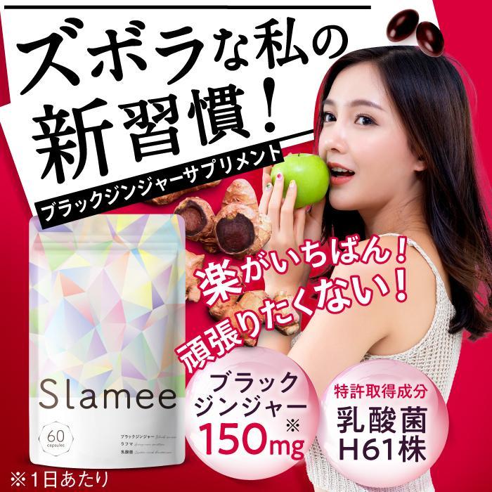 Slamee(スラミー) 乳酸菌サプリメント 4,320億個/1袋 ビフィズス菌 酪酸菌 H61株 ビタミン11種 30日分 aequalis