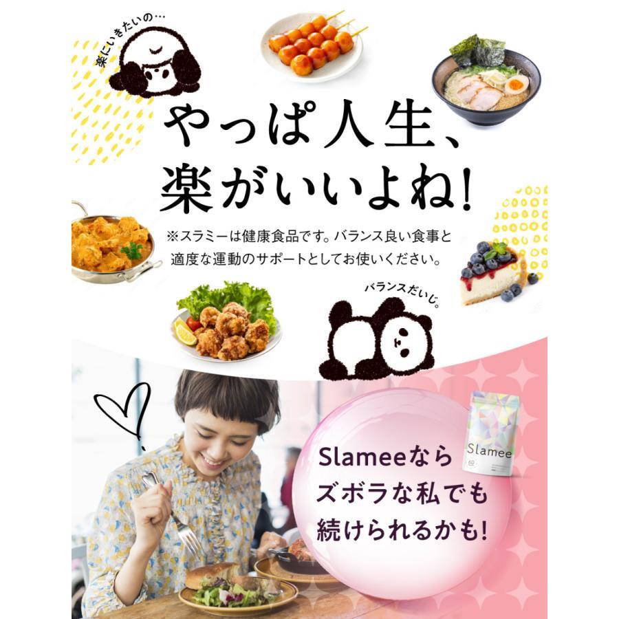 Slamee(スラミー) 乳酸菌サプリメント 4,320億個/1袋 ビフィズス菌 酪酸菌 H61株 ビタミン11種 30日分 aequalis 04