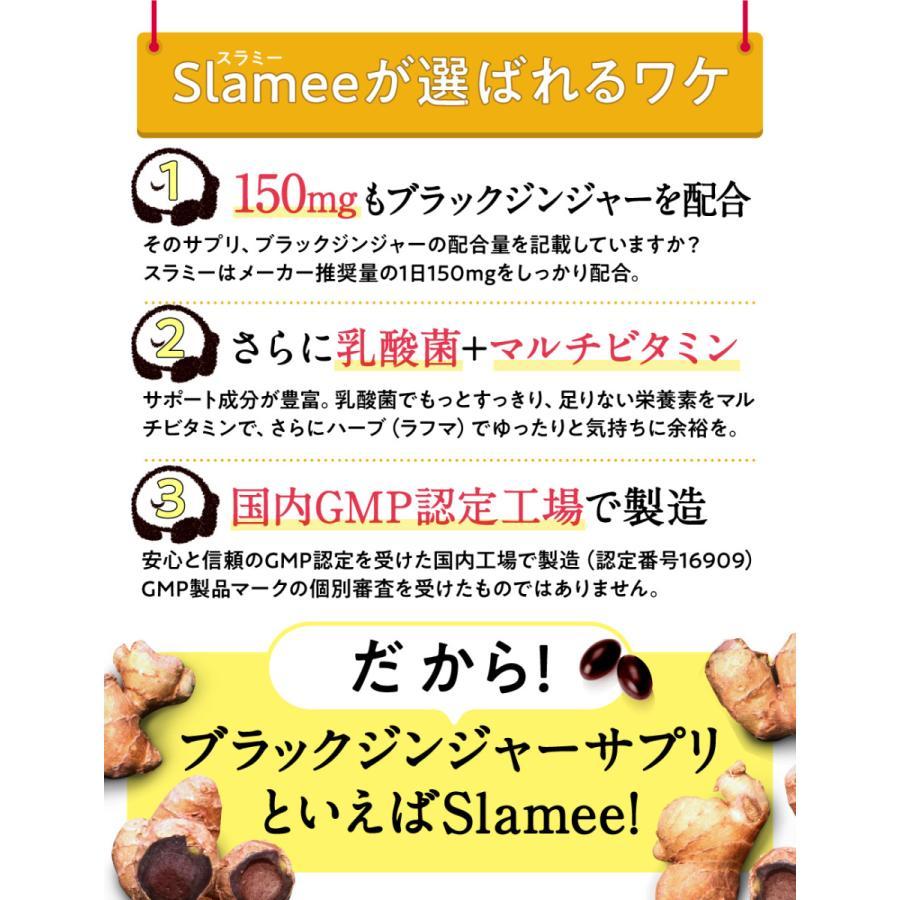 Slamee(スラミー) 乳酸菌サプリメント 4,320億個/1袋 ビフィズス菌 酪酸菌 H61株 ビタミン11種 30日分 aequalis 05