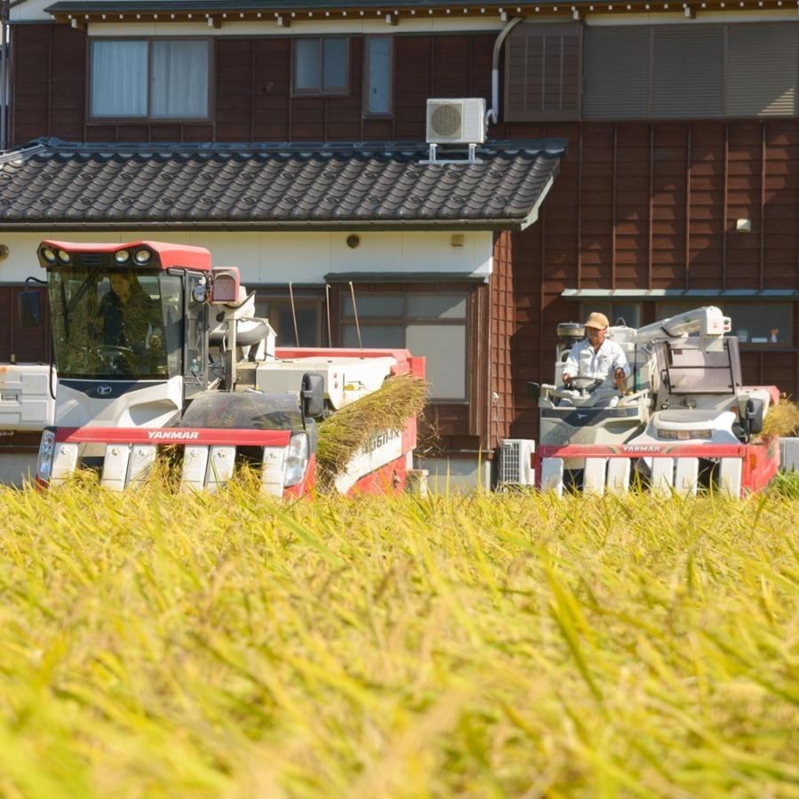 自宅用玄米(5kg×4) コシヒカリ 農林水産大臣賞受賞  / 玄米 お米 ご飯 20kg|agri-takimoto|04