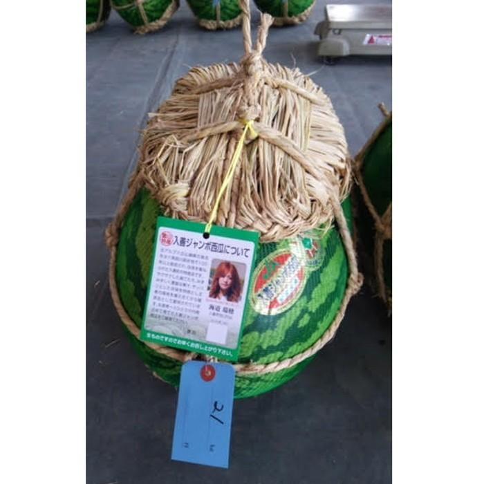 入善ジャンボスイカ 2L(14~16キロ)  贈答用  / 果物 ギフト スイカ 西瓜 農家直送|agri-takimoto|02