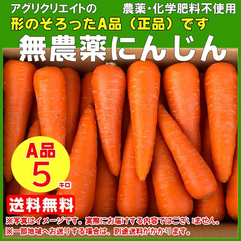 送料無料 無農薬洗い人参5kg A品 捧呈 春の新作続々 無化学肥料栽培 無農薬