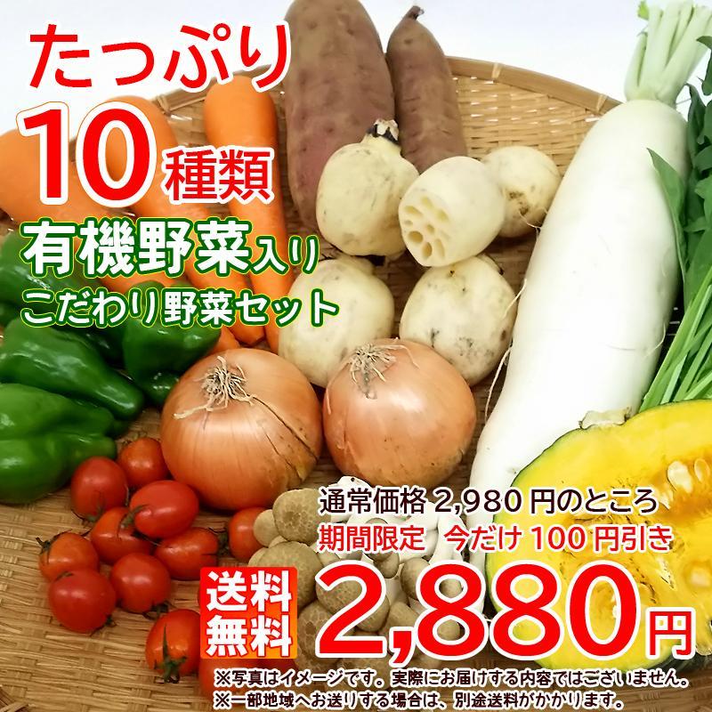 送料無料 SALE開催中 店内全品対象 有機野菜入りこだわり野菜セット