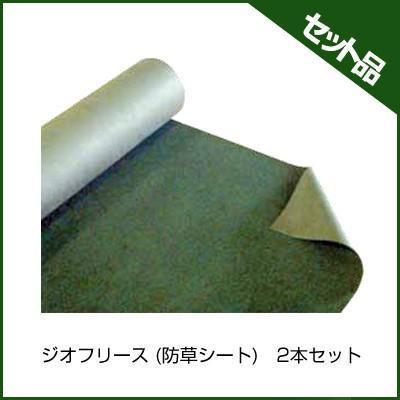 前田工繊 ジオフリース 防草シート BS-200M 緑 2×50m 2本入