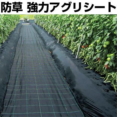 日本ワイドクロス 防草シート 強力アグリシート BB2218 1.5×100m ブラック 農業資材 園芸用品 家庭菜園 ビニールハウス 太陽光発電 メガソーラー