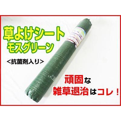 シンセイ 防草シート グリーン 厚手 1×100m 4本入 (135g/m2) 耐用年数約4〜5年