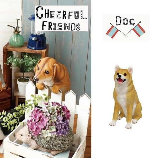 チアフルフレンズ 柴犬のソラ  ma-1003793-00