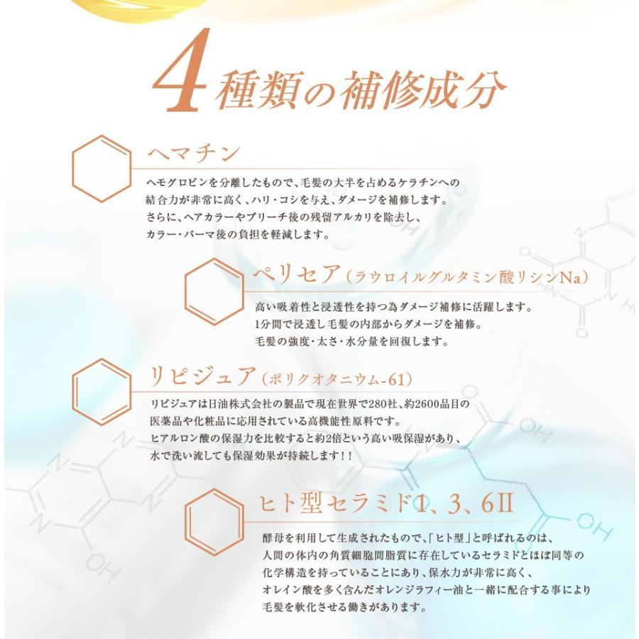 送料無料 3本セット 洗い流さない美容乳液 アイナボーテPPTヘアエマルジョン5.5 (ノンシリコン ヘマチン ペリセア リピジュア配合)|ainastyle|12