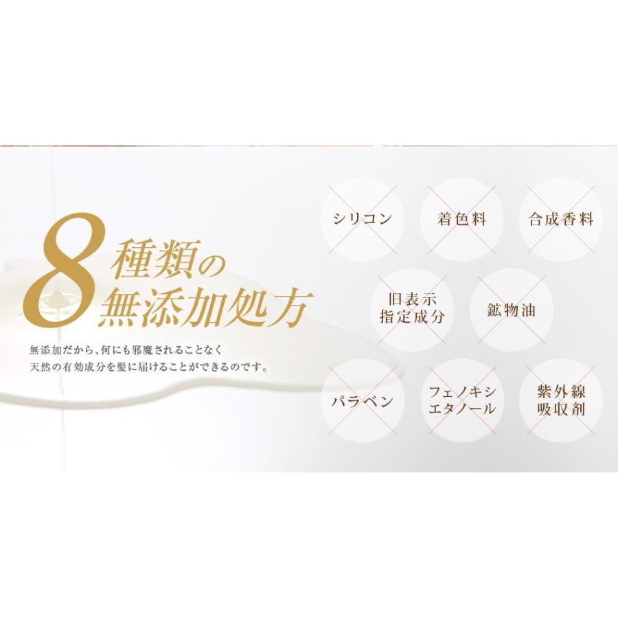 送料無料 3本セット 洗い流さない美容乳液 アイナボーテPPTヘアエマルジョン5.5 (ノンシリコン ヘマチン ペリセア リピジュア配合)|ainastyle|14