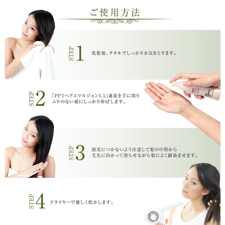送料無料 3本セット 洗い流さない美容乳液 アイナボーテPPTヘアエマルジョン5.5 (ノンシリコン ヘマチン ペリセア リピジュア配合)|ainastyle|17