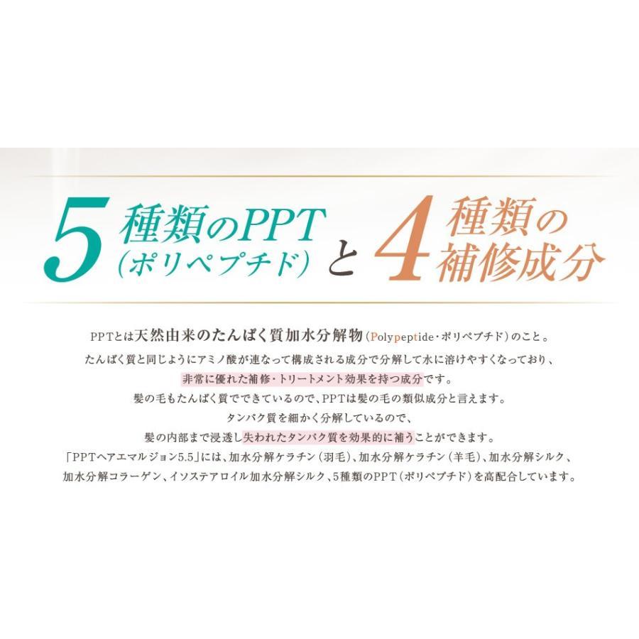 送料無料 3本セット 洗い流さない美容乳液 アイナボーテPPTヘアエマルジョン5.5 (ノンシリコン ヘマチン ペリセア リピジュア配合)|ainastyle|09