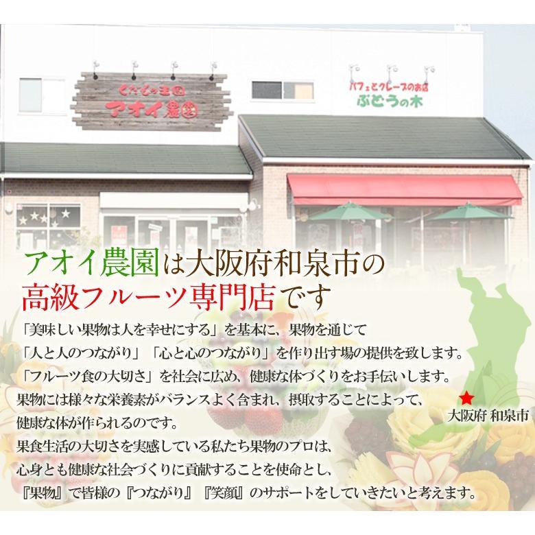 【送料無料】人気&高級 フルーツ ボックス(シャインマスカット 静岡産 クラウンマスクメロン)ぶどう ブドウ メロン フルーツ くだもの 果物 七五三|aino-kajitu|02