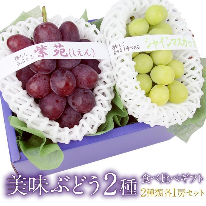 【国産 美味 ぶどう 2種 食べ比べ ギフトセット (シャインマスカット 長野産 山梨産 、紫苑 岡山産)】ぶどう フルーツ くだもの 果物|aino-kajitu
