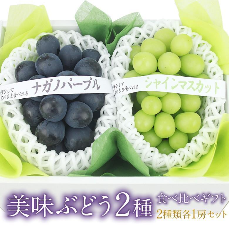 ぶどう フルーツ くだもの 果物【国産 美味 ぶどう 2種 食べ比べ ギフトセット(シャインマスカット ナガノパープル)】 aino-kajitu